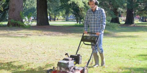 Tree Service Company Shares 4 Tips to Keep Trees Protected While Mowing, Holland, Wisconsin