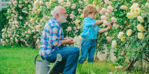 What Visitation Rights Do Grandparents Have in Tennessee?, Crossville, Tennessee