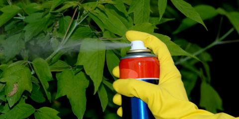 What Are the Dangers & Treatment of Pesticides in Well Water?, Scappoose, Oregon
