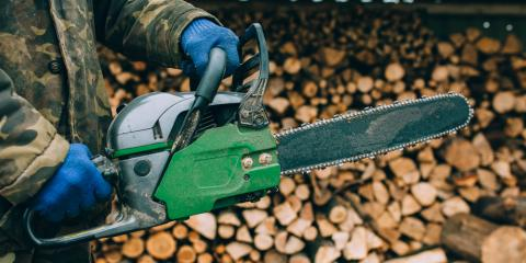 What Tree Pruning Equipment Do You Need?, Stamford, Connecticut