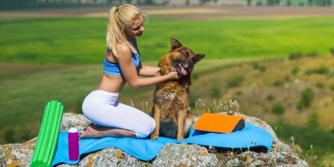 Exercise With Your Dog Is the Best Pet Care, Waynesboro, Virginia