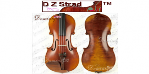 D Z Strad Shares Shares Some Interesting Facts About Violins, White Plains, New York