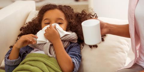 Why Air Duct Cleaning During Flu Season Is Advisable, Florissant, Missouri