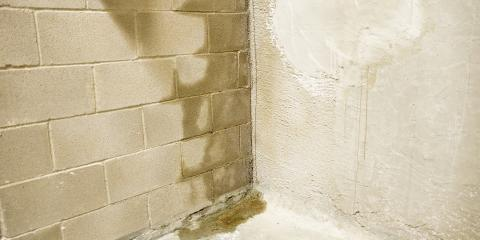 5 Common Signs of Water Damage in the Basement, Lebanon, Ohio