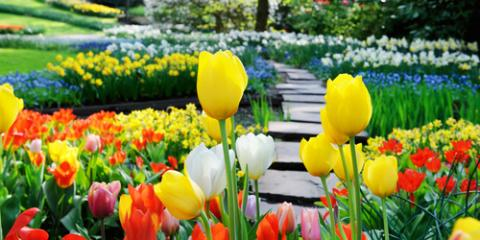 3 Spring Landscaping Design Tips for This Year, Lindstrom, Minnesota