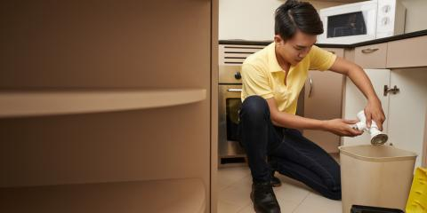 6 Common Culprits for Clogged Drains in Kitchen Sinks, Kirbyville, Texas