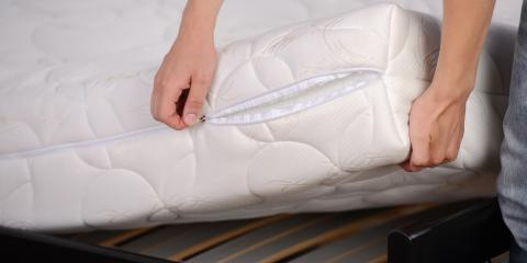The Dos & Don'ts for Bed Bugs in Your Home, Englewood, Ohio