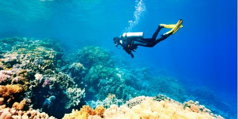 3 Common Misconceptions About Scuba Diving, Kettering, Ohio