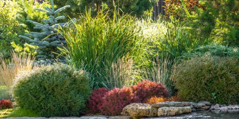 4 Landscaping Ideas To Transform Your Yard Decorative Creations Inc Stallings Nearsay