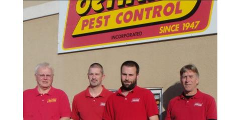 Different Types of Termites & the Best Treatments for Each, Jefferson City, Missouri