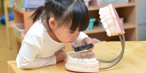 How Quickly Do Cavities & Gum Disease Develop? , Honolulu, Hawaii