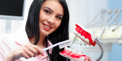 Your Guide to Dental Prophylaxis, Anchorage, Alaska