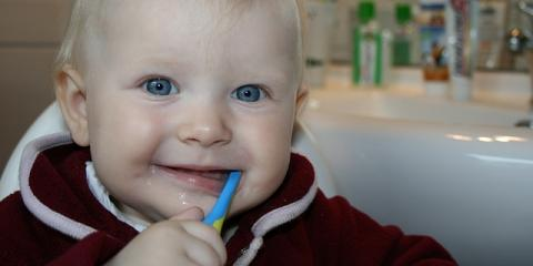 Elko Dentist Discusses How to Instill Good Oral Hygiene Habits in Children, Elko, Nevada