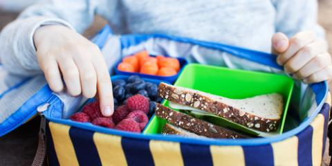Dentists Share 3 School Lunches That Promote Healthy Teeth, Madison, Ohio