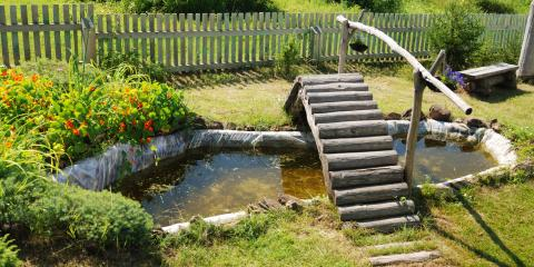 5 Design Principles to Remember When Building a Pond, Denver, Colorado
