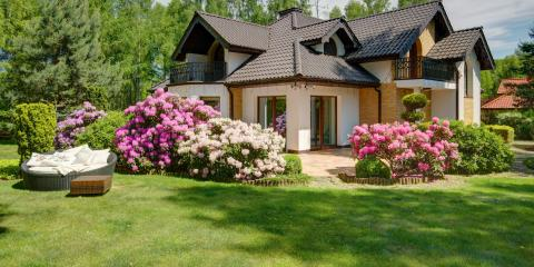 How to Prevent Weeds in Spring With Winter Lawn Maintenance, Catawba Springs, North Carolina
