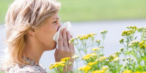 9 Basic Tips for Surviving Allergy Season, East Cocalico, Pennsylvania