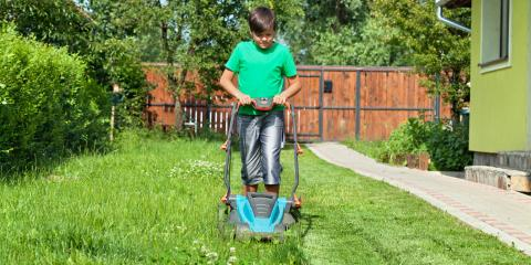Do's & Don'ts of Summer Lawn Care, Waterford, Connecticut