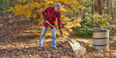 Do's & Don'ts of Fall Landscaping, Asheboro, North Carolina