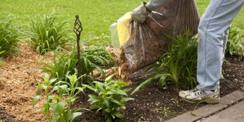 What Areas of Your Landscape Benefit the Most From Mulch?, Ham Lake, Minnesota