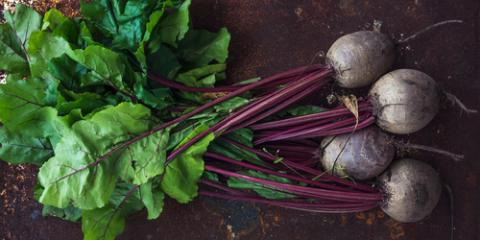 5 Best Garden Vegetables to Grow in the Winter, Ragland, Alabama