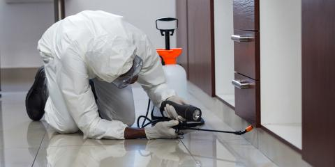 Why You Need Access to 24/7 Commercial & Residential Pest Control, Springfield, Ohio