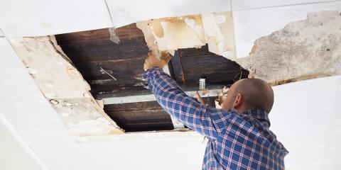 What You Need to Know About Water Damage & Mold, Rochester, Minnesota