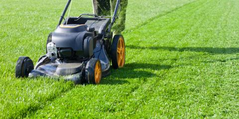 Should You Use Grass Clippings to Mulch Your Lawn?, Fairbanks North Star, Alaska