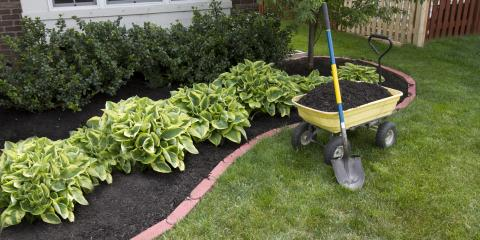 3 Common Types of Mulch, Cromwell, Connecticut