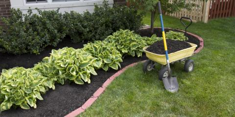 Top 3 Spring Flowers to Include in Your Landscape Design, Koolaupoko, Hawaii