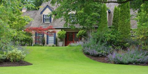 Should You Overseed Your Lawn Annually?, Ballwin, Missouri