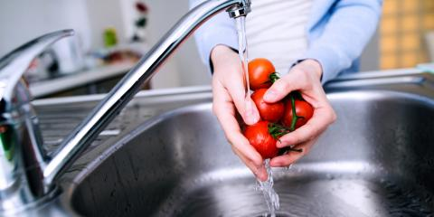 When Should I Repair or Replace the Garbage Disposal?, Freedom, Wisconsin