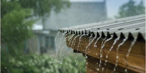 The Top 4 Signs of Yard Drainage Problems, Cincinnati, Ohio