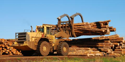 Logging Supplies Experts Highlight the Industry's Different Types of Equipment, Morehead, Kentucky