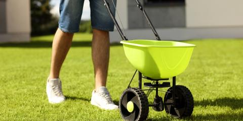 4 Lawn Care Tips For Spring, Scottsville, New York