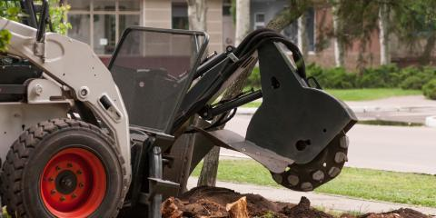 Common Questions About Stump Grinding, Miamitown, Ohio