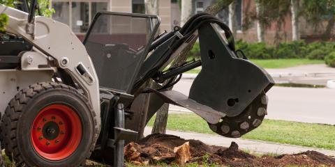 What You Should Know About Stump Grinding, Hilo, Hawaii