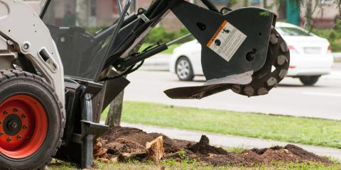What You Should Know About DIY Stump Removal, Macedon, New York