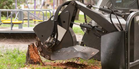 4 FAQs About Tree Stump Removal, Anchorage, Alaska