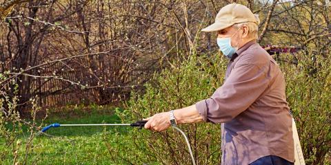 How to Handle & Prevent Lawn Grubs, Lincoln, Nebraska