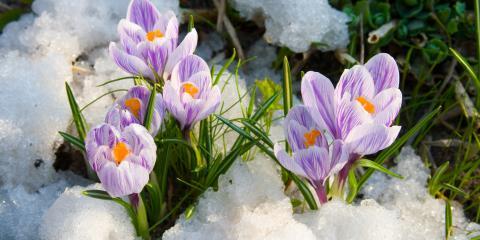 5 Ways to Winterize Your Hardscaping, O'Fallon, Missouri