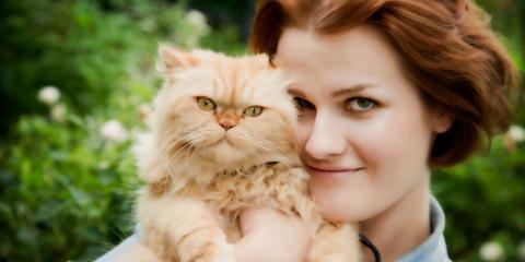 3 Signs Your Cat Is in Heat: Explaining Feline Behavior, San Marcos, Texas
