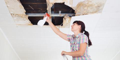 Water Damage Restoration Team Helps You Identify 3 Signs of Mold, Pagosa Springs, Colorado