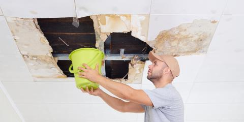 How Do You Handle Water Damage in Your Home?, La Crosse, Wisconsin
