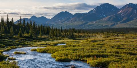 4 Fairbanks Parks That Locals Like to Visit, Fairbanks, Alaska