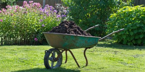 3 Primary Differences Between Wet & Dry Lawn Fertilization Methods, Missouri, Missouri