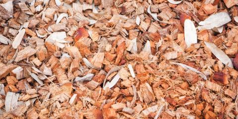 3 Ways Mulches Will Save Your Garden, Lexington-Fayette, Kentucky