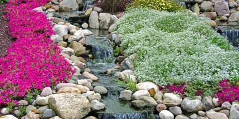 4 Benefits of Rock Gardens, Canyon Lake, Texas