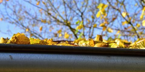 How Can I Keep Pests Out of My Gutters?, Kannapolis, North Carolina