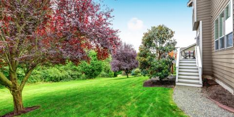 What Is Tree Service & Why Is It Necessary?, Mukwonago, Wisconsin
